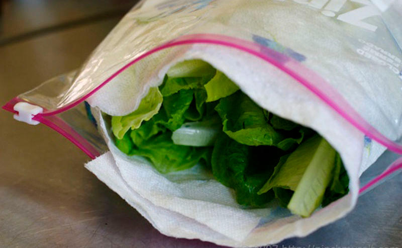 3 fa ons de conserver la salade verte fraiche et voici la. Black Bedroom Furniture Sets. Home Design Ideas