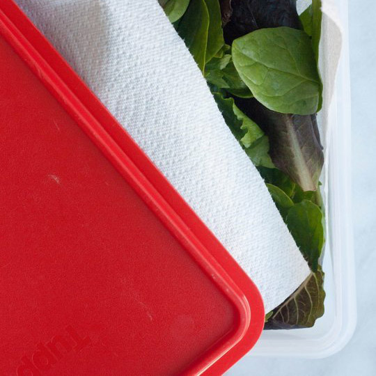 salade_tupperware_frigo